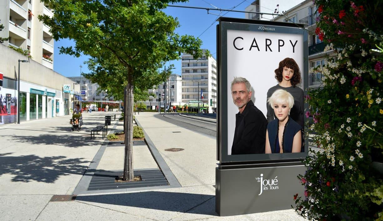 affichage 120x176 JC Decaux de la campagne Carpy